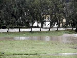 Povodňový val – stromy u koupaliště přežijí, břízy na Zvěřinci padnou