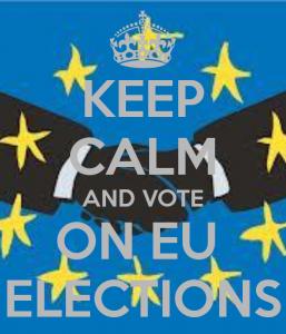 Volební rok začíná výběrem europoslanců. Kdy a kde najdete urnu?